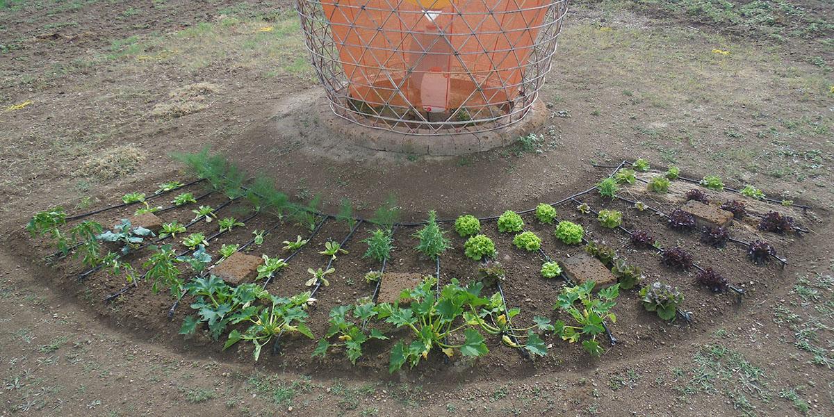 Warka Garden