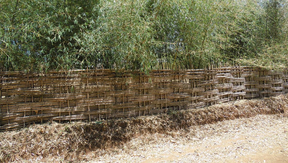 Ethiopia house fence